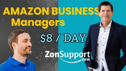 Native English speaking Amazon Business Manager from $8/day - ZonSupport.com